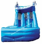 Dolphin 16' Dual Lane Slide Rental