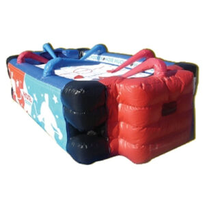Inflatable Hose Hockey