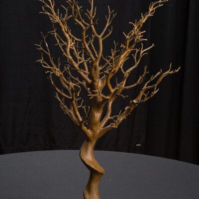 Natural Manzanita Tree