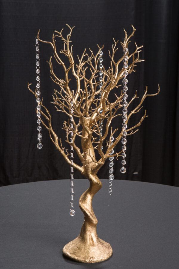 Gold Manzanita Tree