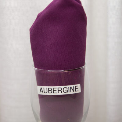 Aubergine Linen
