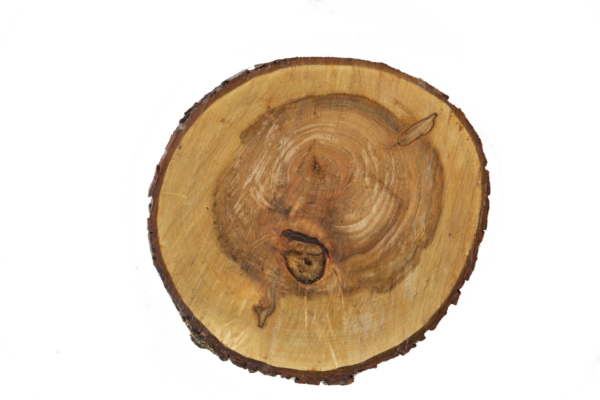 Rustic Wood Charger Plate