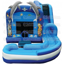 Wet combo bounce house